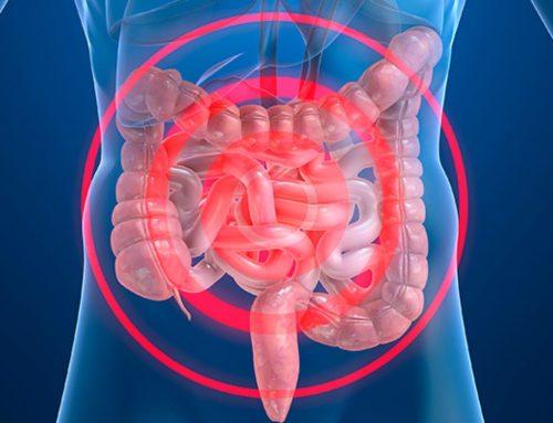 La Farmacia andaluza mejora sus destrezas en la asistencia a pacientes de la Enfermedad de Crohn